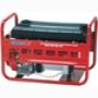 Бензиновый электрогенератор ENDRESS ESE 606 HS-GT
