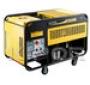 Генератор дизельный DDE DDG6000E 4,5/5,0 кВт, 1-фазный